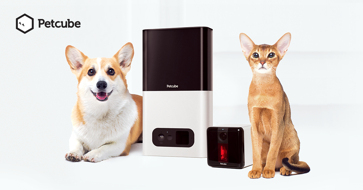 Petcube Wi-Fi Pet Cameras - Monitor & Interact With Pets Remotely